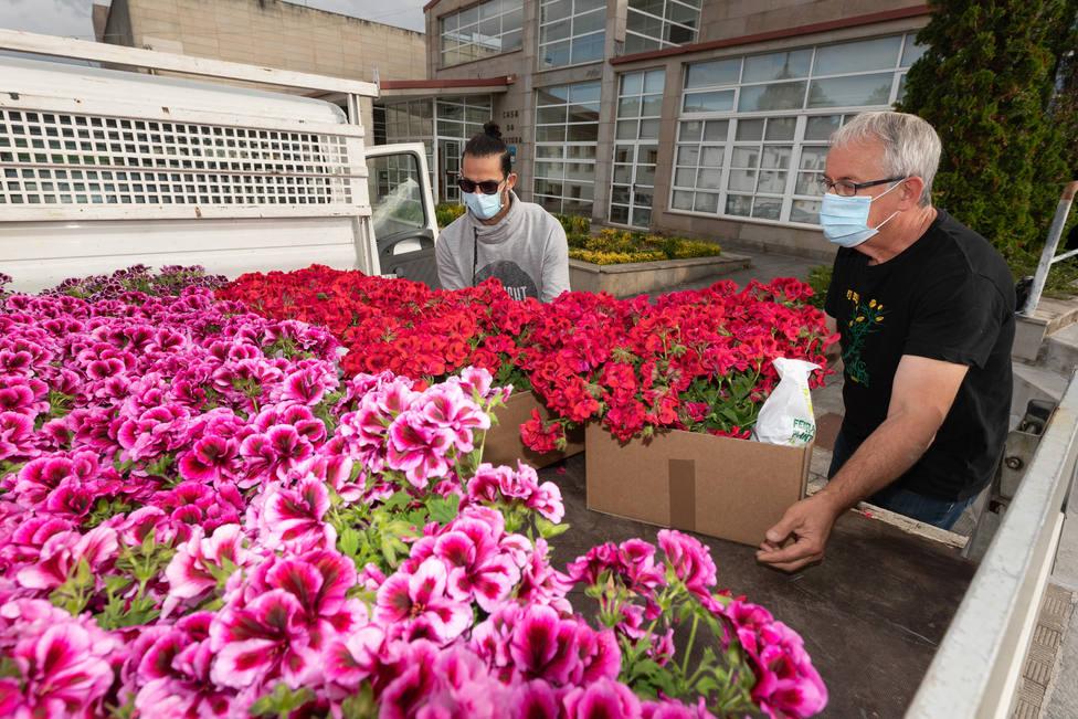 El concejal Manolo Varela colabora en las tareas de reparto de flor. FOTO: César Galdo
