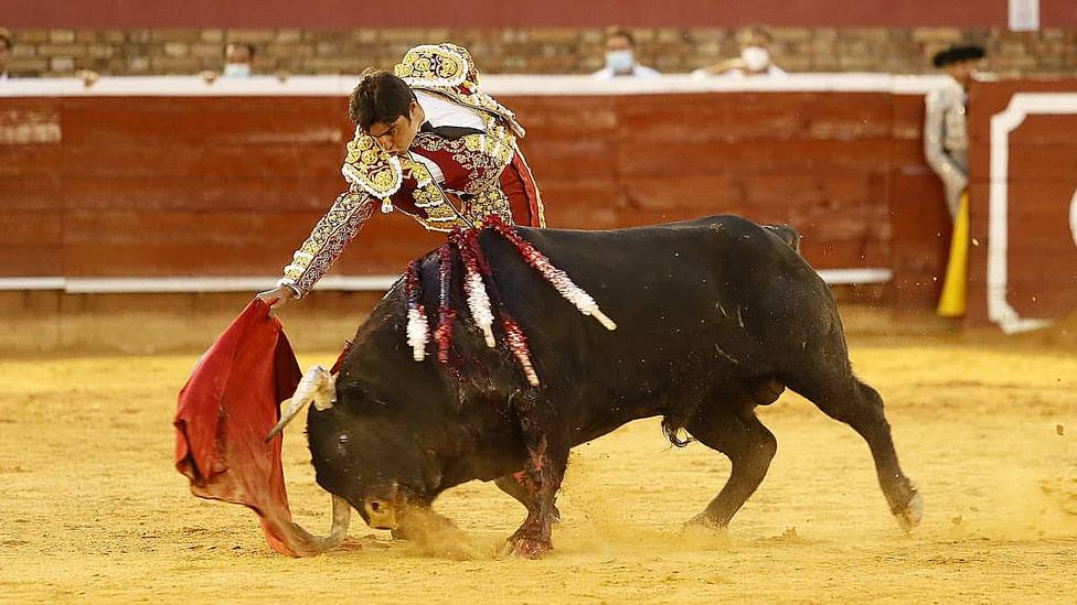 Miguel Ángel Perera toreando a Vitoreado, el toro de Juan Pedro Domecq que indultó en Huelva