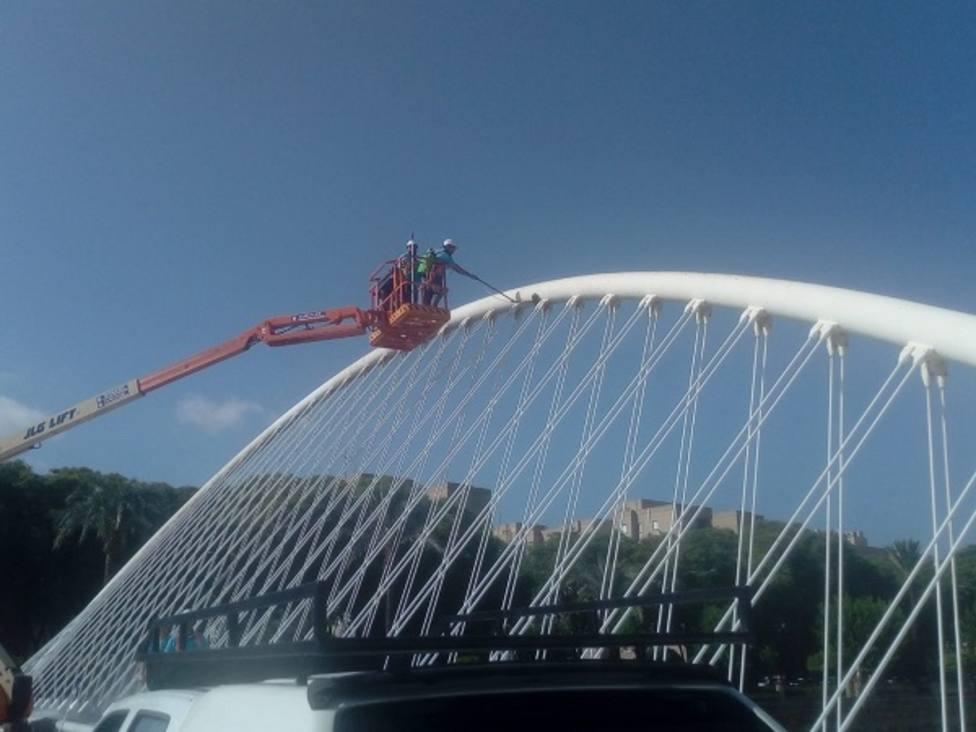 Una grúa de 20 metros para limpiar los puentes del Río Segura
