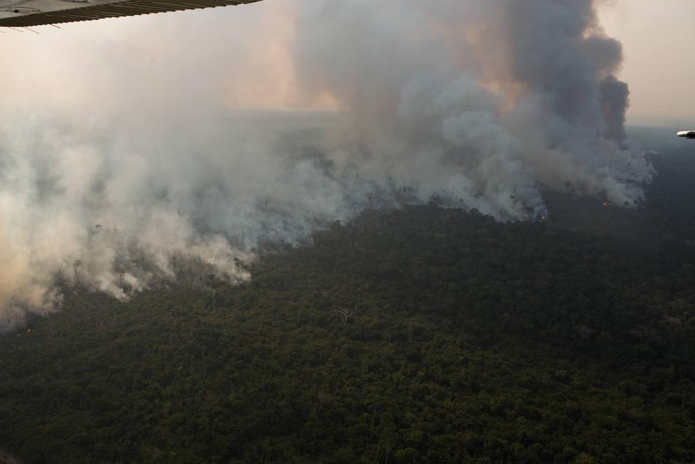 El ministro de Medio Ambiente de Brasil cree una bobada eso de que el Amazonas pertenece a la Humanidad