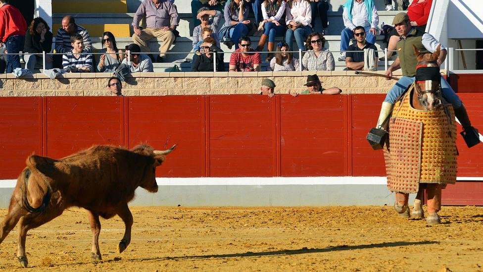 La plaza de toros de La Sagra de Villaseca acogerá desde el 10 de julio los tentaderos del Alfarero de Plata