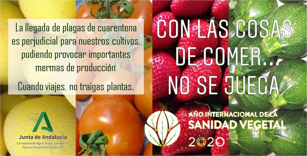 ctv-t0g-campaa-conlascosas