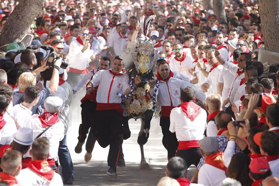AMP.- Los caballos del vino de Caravaca (Murcia), Patrimonio Cultural Inmaterial de la Humanidad de la Unesco