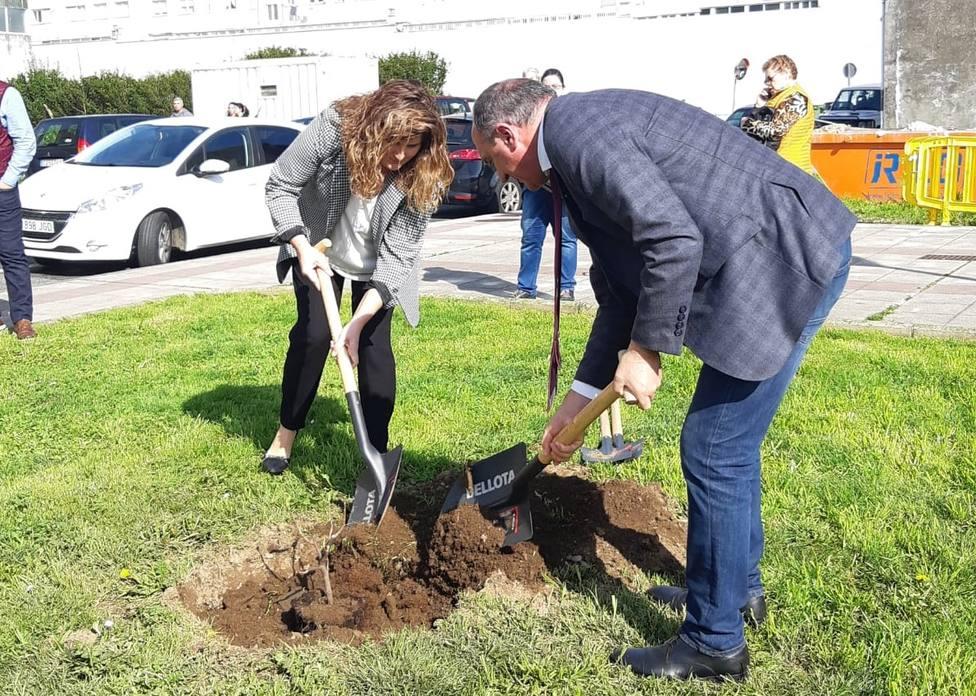 Plantación de una higuera en la zona verde naronesa - FOTO: Concello de Narón