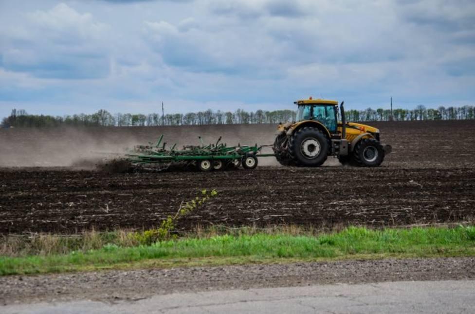 Abandono suelo agrario canarias