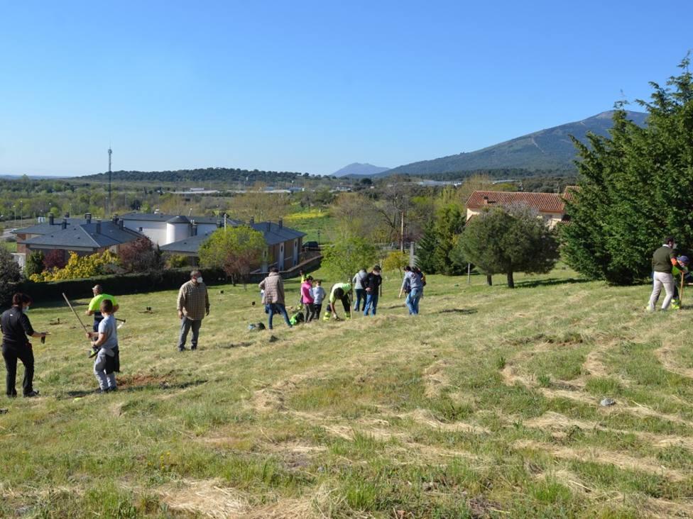 Plantación ciudadana en Los Builes de Guadarrama