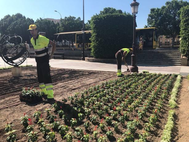 El Ayuntamiento adorna Murcia con 70.000 flores de colores para recibir la Feria de Septiembre