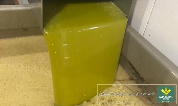 Molturación de aceite