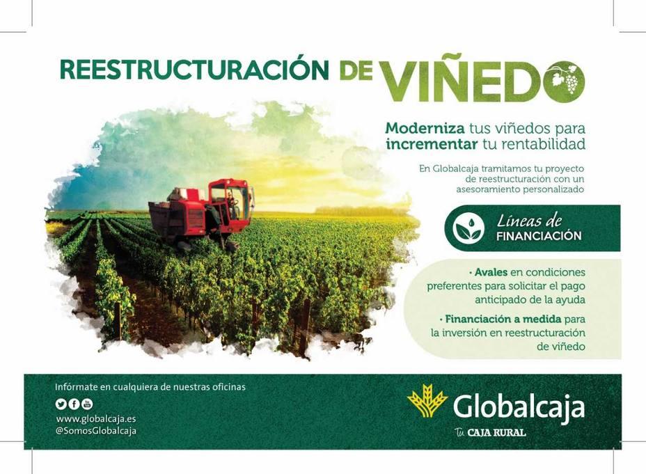 GLOBALCAJA responde y se compromete con el sector agrario, en la reestructuración y reconversión del viñedo