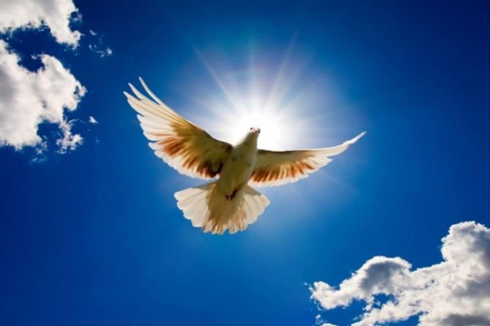 La Paloma sube al Cielo