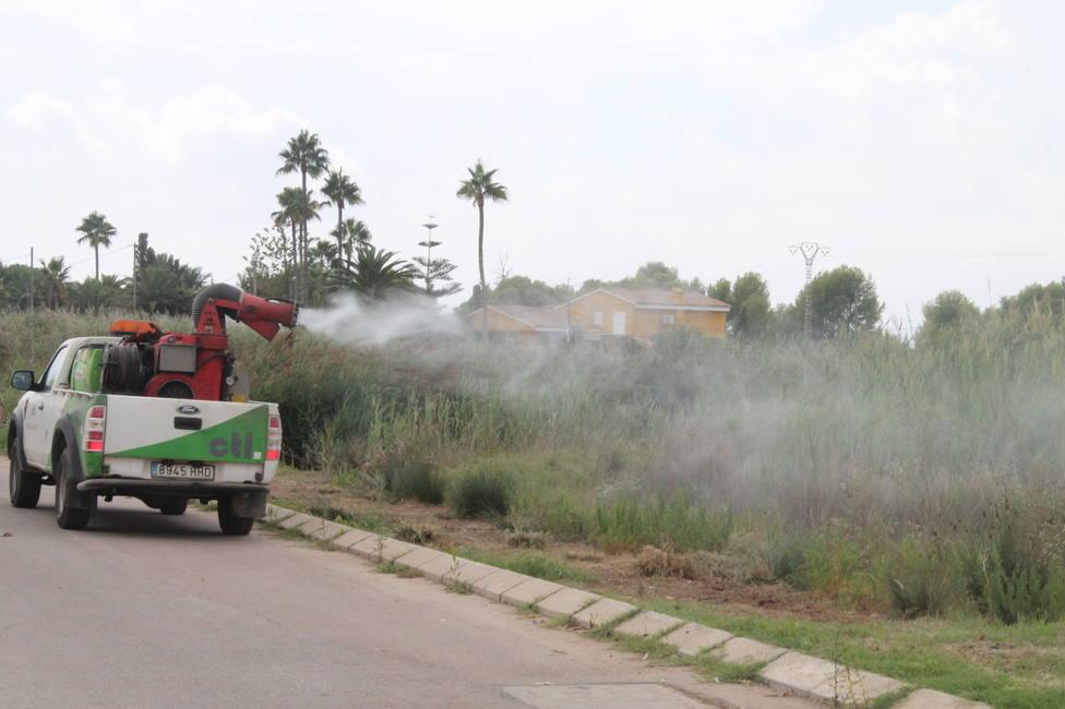 Tratamientos contra los mosquitos en Benicàssim