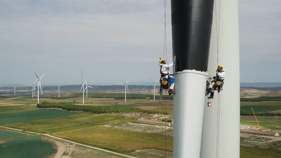 Iberdrola marca con vinilos en forma de ojos aerogeneradores de siete parques eólicos de Burgos para ahuyentar aves
