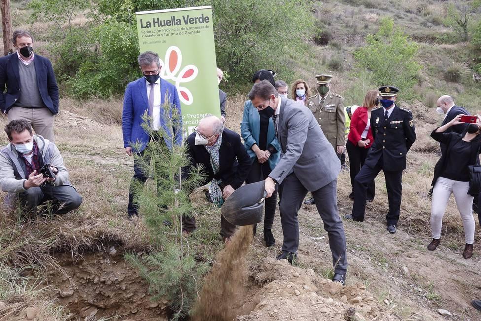 Granada2031.- Granada inicia la plantación de 7.000 árboles en una parcela de Lancha del Genil