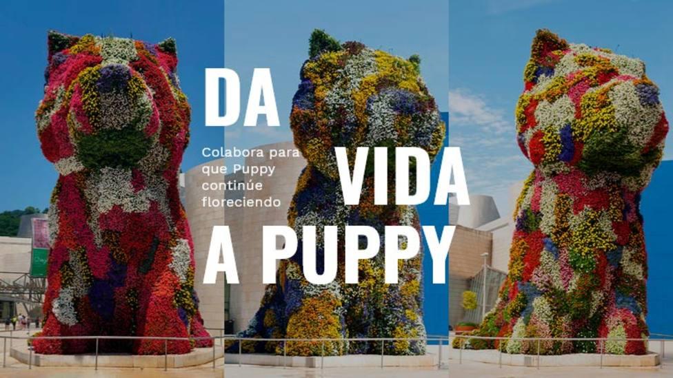 'Puppy', el perro jardinera del Guggenheim de Bilbao, pide ayuda a través de una campaña de crowdfunding
