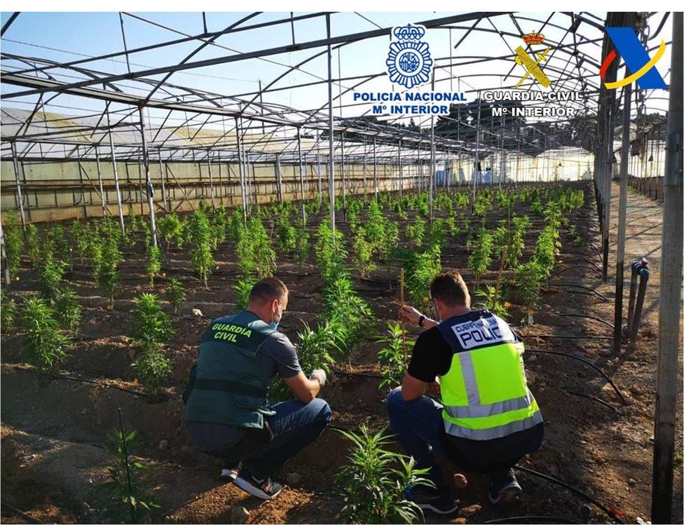 Desmantelada una banda organizada que realizaba envíos de droga por paquetería a través del aeropuerto - Alicante - COPE