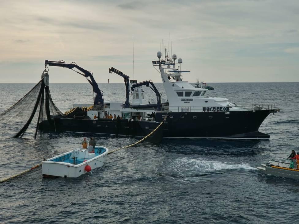Grupo Balfegó vincula la gestión eficaz del atún rojo a la recuperación de la especie