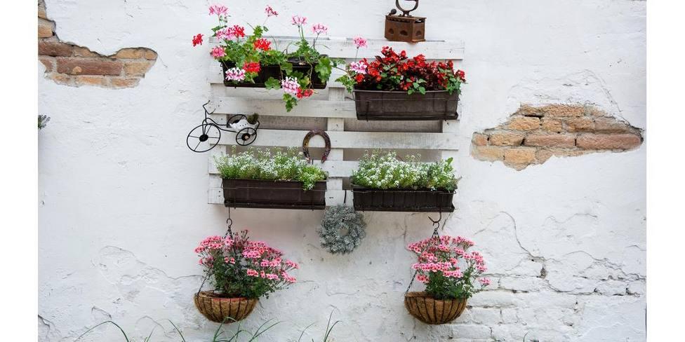 Ideas originales y sencillas para decorar pequeños espacios de tu casa con plantas y flores