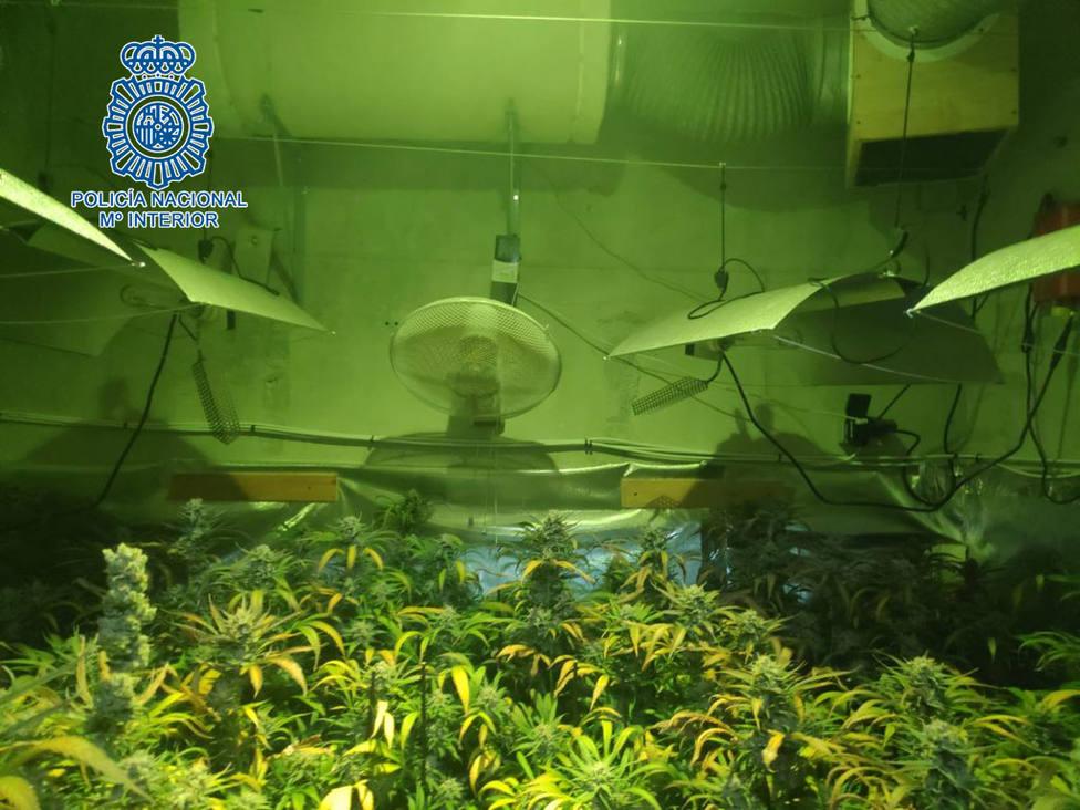 Operación Liebre: seis detenidos por narcotráfico en Jerez y Sanlúcar