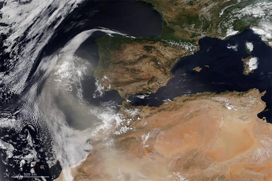 El polvo sahariano que llega a la península afecta a las microalgas, claves en la producción de oxígeno, según estudio