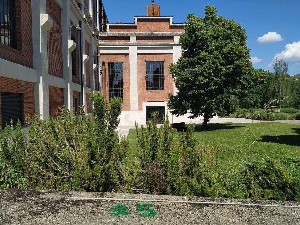 ctv-fzw-200529 botanica-museo-energia-3