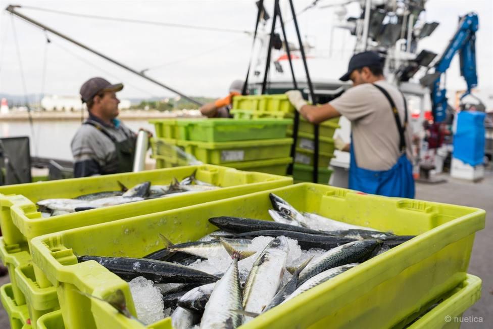 ctv-muo-pescadores-de-santona