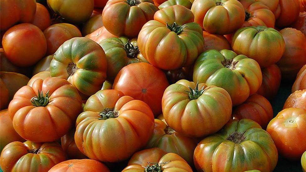 El tomate se come de muchas maneras y hay muchos tipos variados donde elegir.