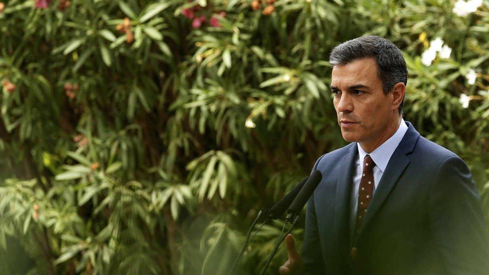 Sánchez: Entre el relato y el foco