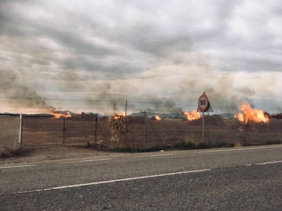 Ecologistas en Acción acusa a Medio Ambiente de mantener una actitud pasiva con las quemas agrícolas
