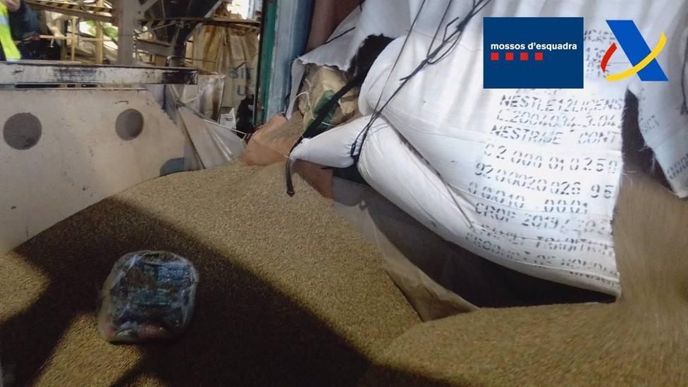 Interceptados cerca de 250 kg de cocaína en el puerto de Barcelona