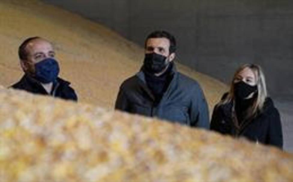 El líder del PP, Pablo Casado, visita las instalaciones de Comercial ALECA