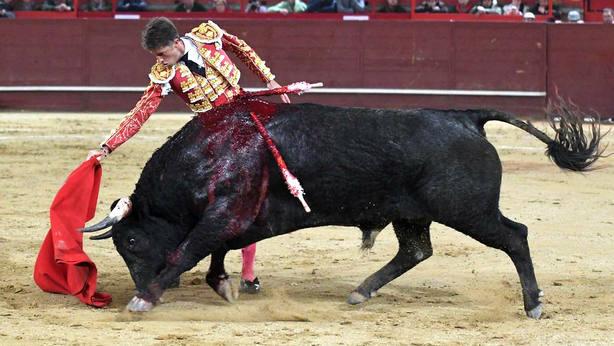Manuel Escribano durante su actuación ante un toro de Miura en Valdemorillo