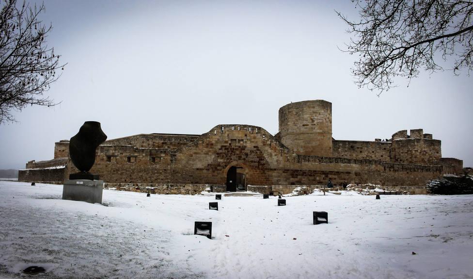 Nieve Zamora