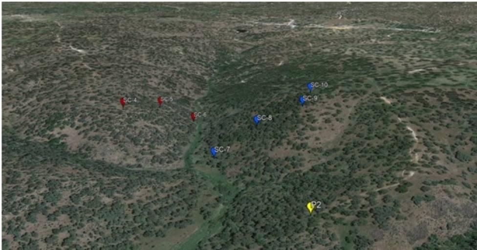 La humedad de la roca en la dehesa supone una fuente adicional de agua para la vegetación en época de sequía