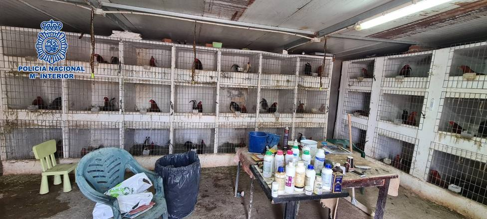 Desarticulada una organización criminal que distribuía cocaína y organizaba peleas de gallos