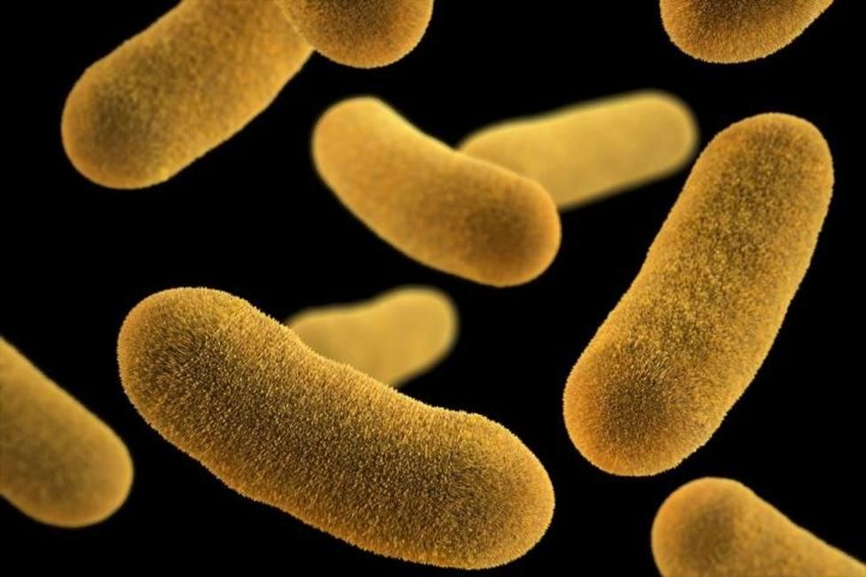 La resistencia a carbapenem y colistina aumenta el riesgo de sufrir infecciones intratables, según un estudio