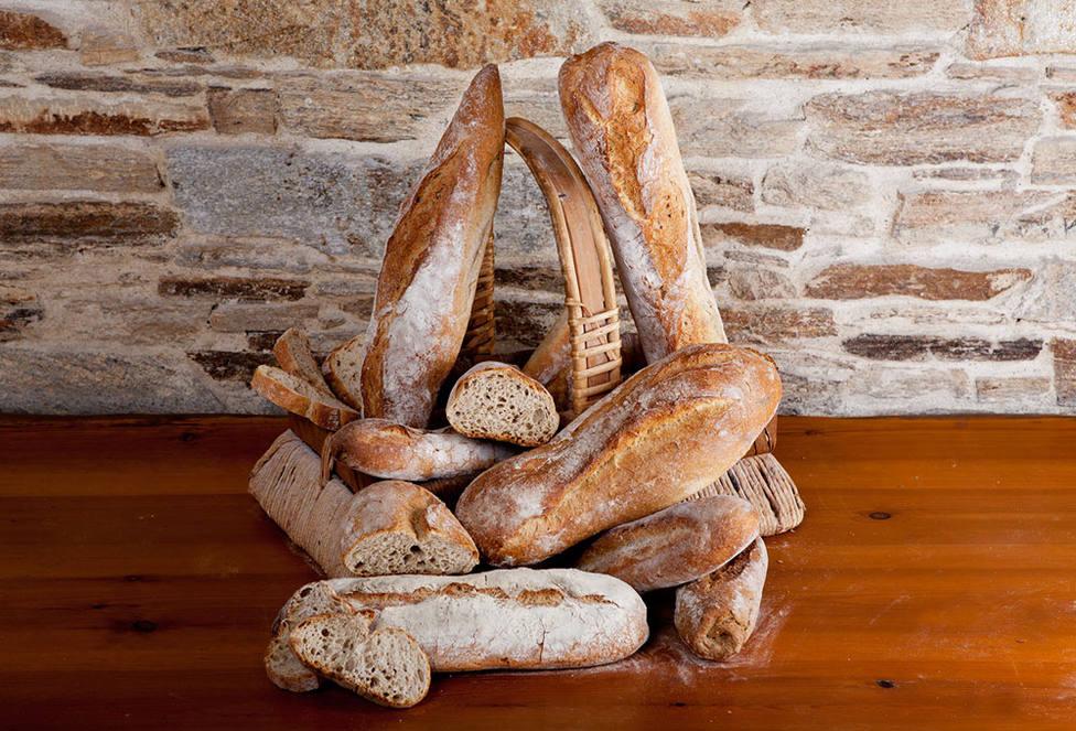 Diversos tipos de pan - FOTO: Panadería La Nueva