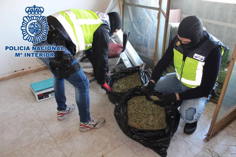 Dos detenidos y 44 registros en la operación Torre contra el fraude de luz y tráfico de marihuana